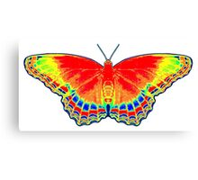 Colorful Butterfly - Red Canvas Print