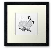 Rabbit Champagne D'Argent Framed Print