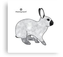 Rabbit Champagne D'Argent Canvas Print