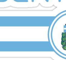 Copa America 2016 - Argentina (Home White) Sticker