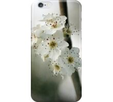 Days of Blossom iPhone Case/Skin