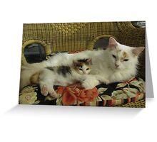 Kitten Mentoring by an older Cat Greeting Card