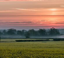 Sunrise over a Rapeseed Field by James  Key