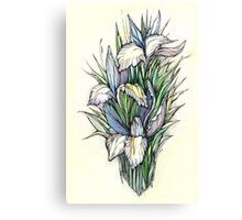 Beautiful iris - Hand draw  ink and pen, Watercolor, on textured paper Canvas Print