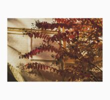 Dainty Branches - Warm Fall Colors - Washington, DC Facades Kids Tee
