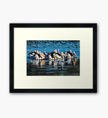 Little dude escaping the pack Framed Print