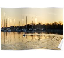 Golden Ripples and Reflections Poster