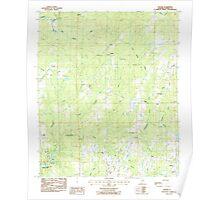 USGS TOPO Map Alabama AL Dexter 303680 1987 24000 Poster