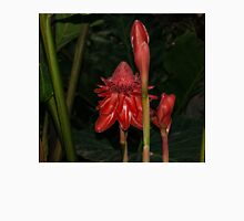 Red Torch Ginger Lily - Glossy, Exotic and Wonderful Womens Fitted T-Shirt