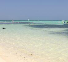 Bathing at Sorobon Beach, Bonaire Sticker