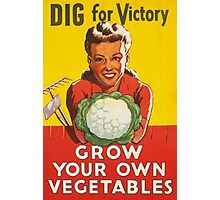 Dig for Victory Photographic Print