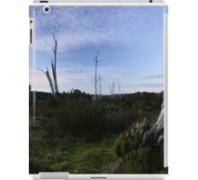 Middlesex Plains iPad Case/Skin