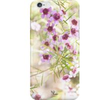 Confetti - Pink Geraldton Wax  iPhone Case/Skin