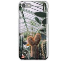 Cacti in Greenhouse iPhone Case/Skin