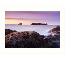 Haulashore Island - Nelson - New Zealand Art Print