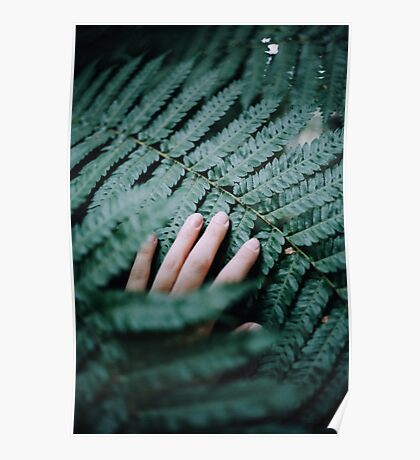 Hand touching Fern Poster