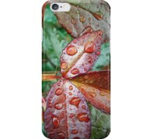 After rain iPhone Case/Skin