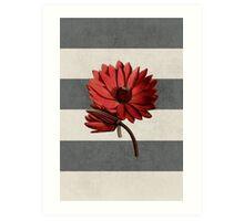 botanical stripes - red water lily Art Print
