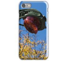 A Flower or a Snake - Sinuously Curved Art Nouveau Light at Paris Metro iPhone Case/Skin