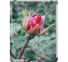 rose bud iPad Case/Skin