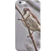 The Tree Sparrow iPhone Case/Skin