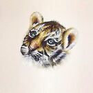 Tiger Cub Watercolour by Jacqui Frank
