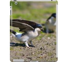 House Martins collecting mud iPad Case/Skin