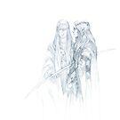 Elf Queen by Jon Hodgson