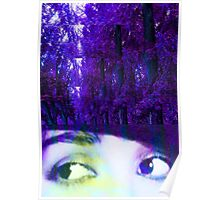 Eyes in the Forest Poster