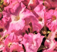 Vintage Pretty Pink Petunias  Sticker