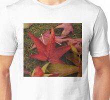 Hot Autumn Colors Unisex T-Shirt