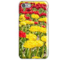 red and yellow tulips growing in the flowerbed iPhone Case/Skin