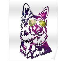 Galaxy dog Poster