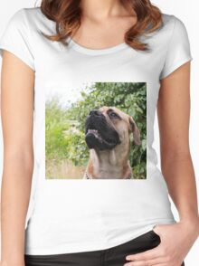 portrait of big dog Women's Fitted Scoop T-Shirt