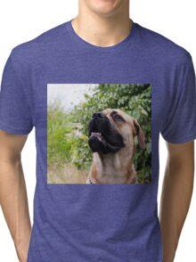 portrait of big dog Tri-blend T-Shirt