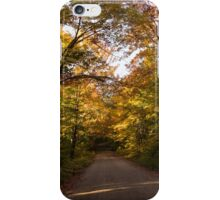 Forest Road - a Joy Ride Into Autumn iPhone Case/Skin