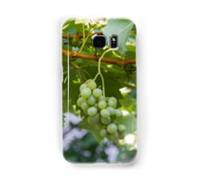 grape and vineyard in spring Samsung Galaxy Case/Skin