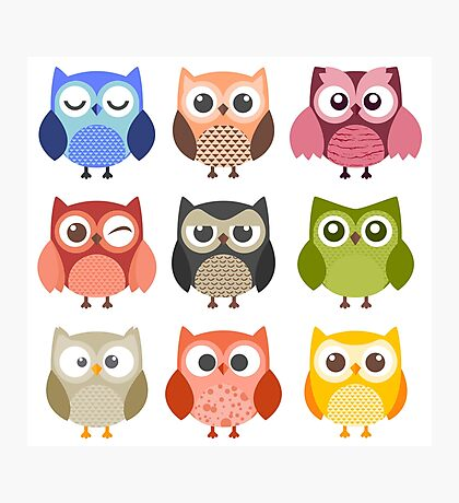 Owl Friends Photographic Print