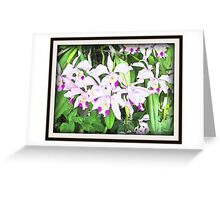 Surreal Asian Orchid Greeting Card