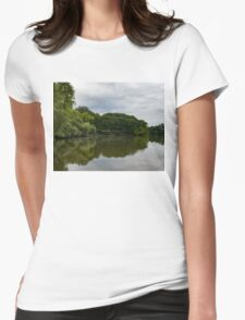 Green and Gray Summer Mirror Womens Fitted T-Shirt