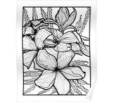 Celadine - Ink Flower Drawing Poster