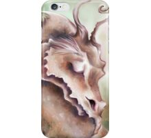 Sleeping Dragon - Peace and Tranquility iPhone Case/Skin