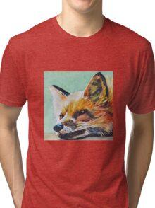Watchful Fox Tri-blend T-Shirt