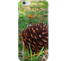 Pine cone down iPhone Case/Skin