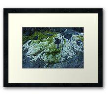 Green&White Framed Print