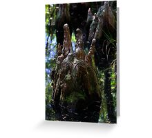 Cypress knobs Greeting Card