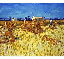 Vincent van Gogh Corn Harvest in Provence Photographic Print
