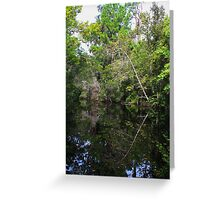 Mirror Image Tree on river Greeting Card