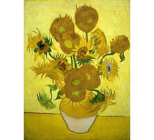 Vincent Van Gogh Fifteen Sunflowers In A Vase Photographic Print