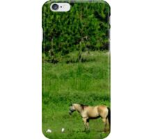 Lonely Pony iPhone Case/Skin